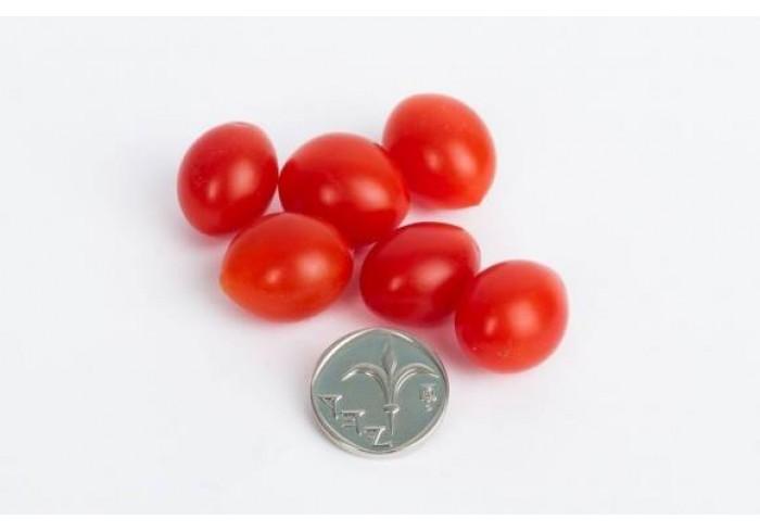 Самые маленькие помидоры в мире