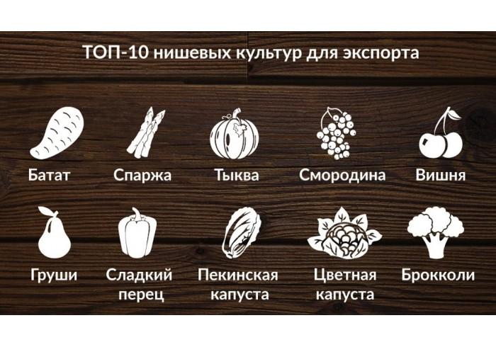 ТОП - 10 нишевых культур для экспорта