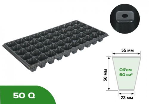 Голландский стандарт  50Q