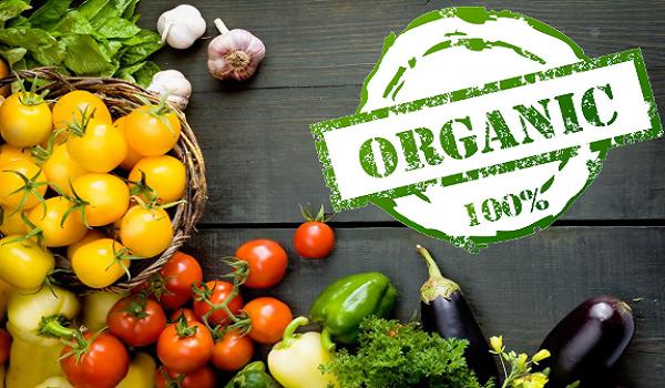 Украина в ТОП 20 по площади органических земель